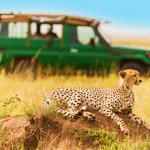 Strani_Tanzania-317x220_2